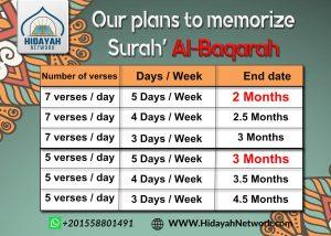 plan of Surah Al-Baqarah for our intensive hifz course